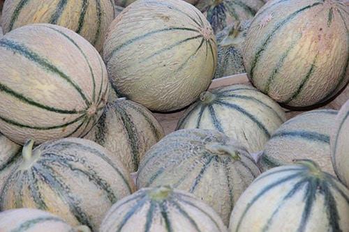 Een stapel meloenen aan de Atlantische kust van Frankrijk.